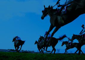 French Horse Racing Organization Launches a New, Improved Website